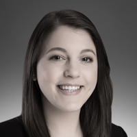 Lauren A. Heimer Professional Liability Lawyers